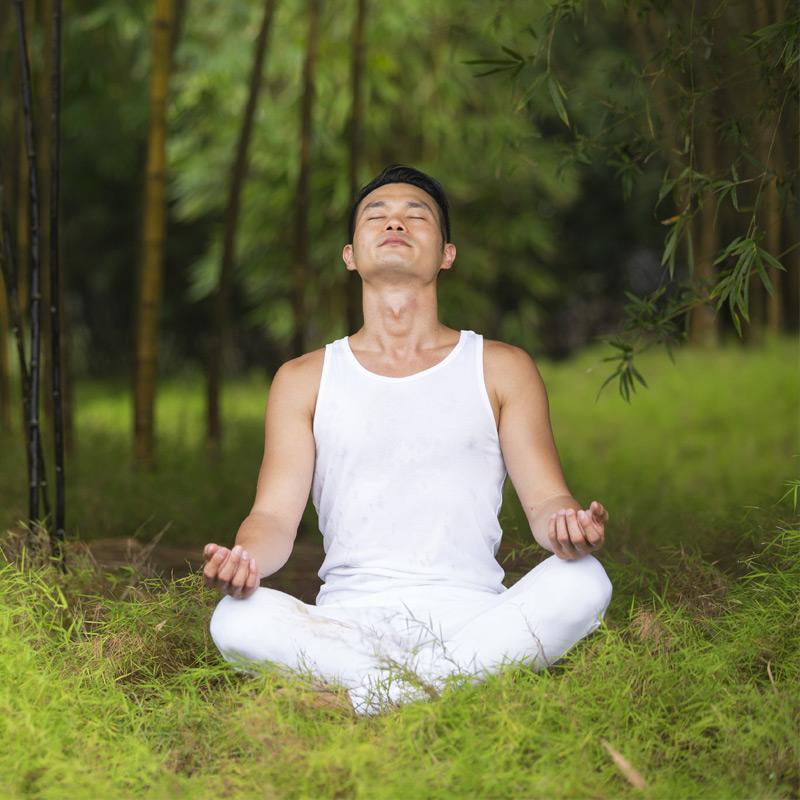 tai-chi wellbeing insurance